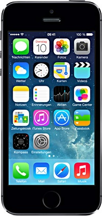 Apple iPhone 5S 64GB Серый космос (Space Gray)